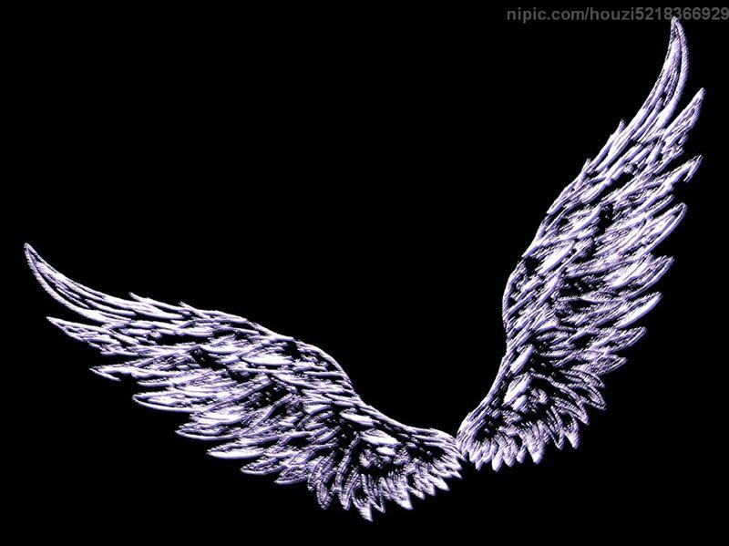 恶魔翅膀素材黑色