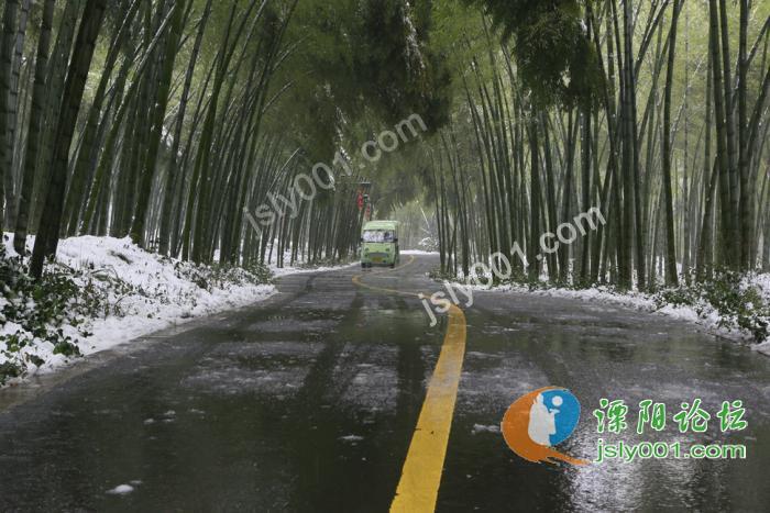 南山竹海雪景-码头街-溧阳码头街-溧阳论坛-溧阳信息